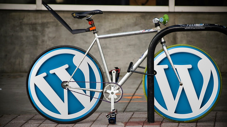 Why WordPress is Best CMS for Startups?